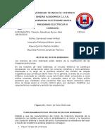 MOTORES-DE-ROTOR-BOBINADO.docx