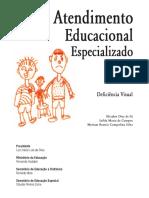 Deficiência Visual.pdf