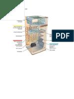 Sistema de Refrigeración (Reparado)