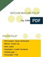 MACAM-MACAM POLIP