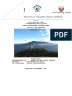 Informe Aisped 2015 Noviembre
