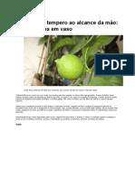 texto_Limão cultivo em vaso.docx