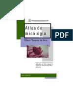 Atlas Dermicologia