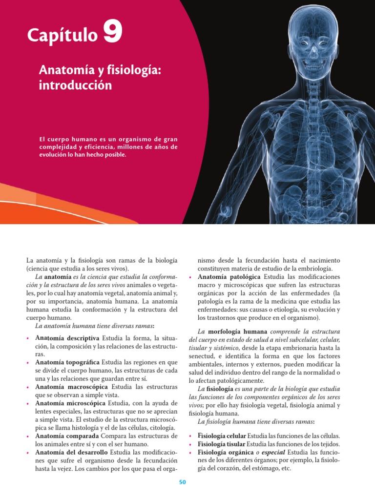 Único Capítulo 9 Anatomía Y Fisiología Elaboración - Imágenes de ...