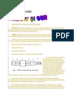 40909528-Referat-3-Osii-Si-Arbori.docx