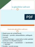 01_ Patologia Glandelor Salivare