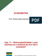 Econometria_Capitulos 11.pdf