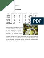 Análisis de Los Factores Interno E-3
