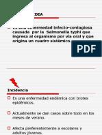 aglutinacion tifoidea brucella