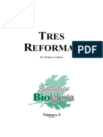 Schwarz Christian - Tres Reformas.pdf