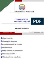 Consultatie 2016-11-19
