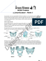 DCSS Training 14 - Ammortizzatori