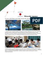 Miracolul japonez