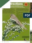 New Directions 2 - Birdwatch