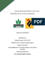 First Interm Report