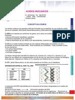Modulo promotor de aprendizaje  Acidos nucleicos.pdf