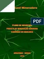 Plano de Negócios - Abacaxis (Suzel Mineradora) (1)