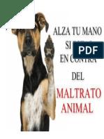 foto de maltrato animal.docx