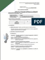 FORMATO SNIP 06.pdf