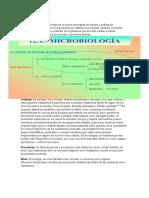 Guía Microbiología