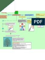 Transiciones de Desarrollo Mapa Conceptual