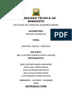 Briofitas Musgos y Hepaticas 2 Parcial 2 Exposicion Grupal Botanica Sistematica
