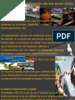 diversidadyclasificacindelosseresvivos-101116163058-phpapp02