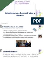 8.0 Valorizacion de Concentrados y Metales