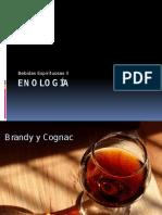 Enología II