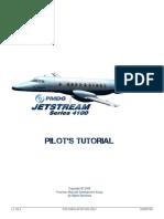 Pmdg j41 Pilot Tutorial