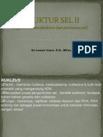 presentasi kuliah II-Organel, sitoskeleton & pertautan sel.ppt