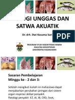 Patologi Unggas Sistem Respirasi_1
