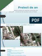 Proiect Economie Final Pislaru