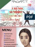 Nursing Care of Uremic Syndrome