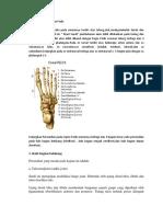 Anatomi pedis.pdf