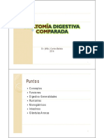 21Anatomía Digestivo Comparada 1