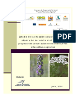 131486137-estudio-lavandin-y-coriandro-pdf.pdf
