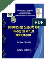 Basidiomycota Fdf 2015