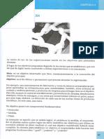 Microemprendimientos - capitulo 2