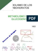 Glucogenolisis.ppt