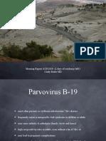 Parvovirus