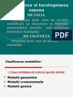 Mutatii Si Maladii Genetice