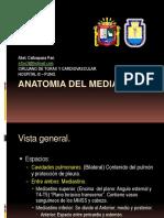 21 Anatomia Mediastinal