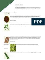 Condimentos aromáticos empleados en la cocina.pdf