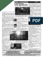 SZI-02.pdf