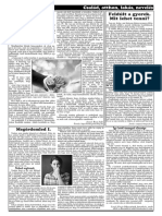SZI-13.pdf