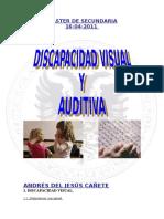 Trabajo Discapacidad Auditiva y Visual