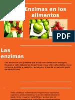 Enzimas de Los Alimentos