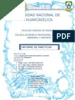 Informe Nº 2 Laboratorio Bioquimica - Copia