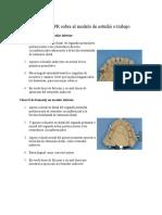 Diseño de PPR Sobre El Modelo de Estudió o Trabajo